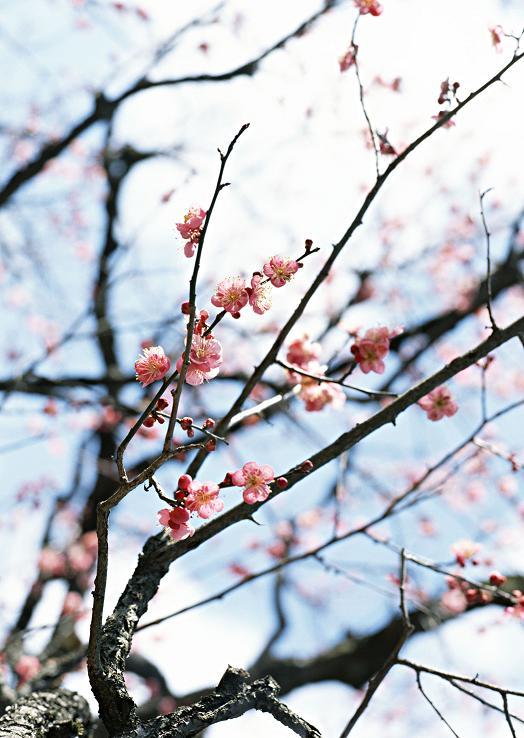 AreaBiz北九州|北九州エリア情報発信サイト